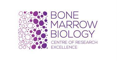 INAUGURAL MADDIE RIEWOLDT'S VISION NATIONAL SYMPOSIUM ON BONE MARROW FAILURE SYNDROMES